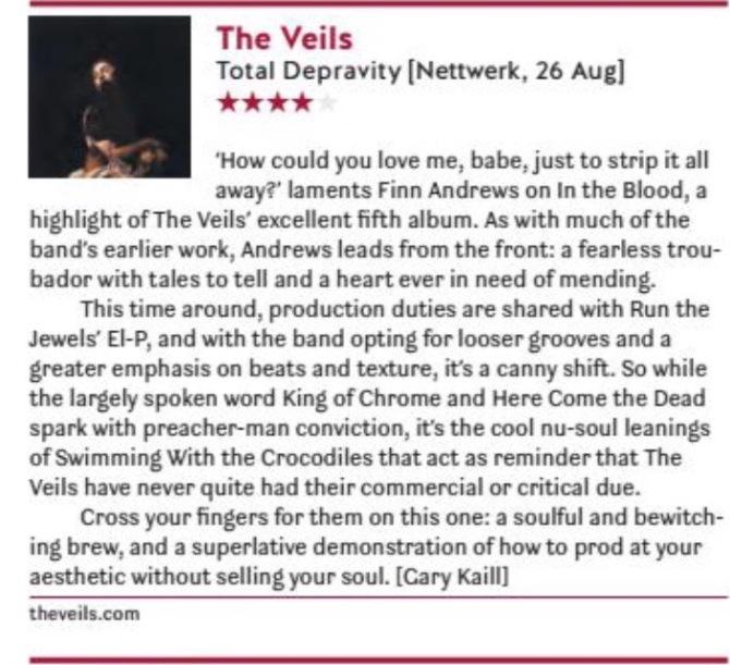 The Veils - The Skinny.jpg